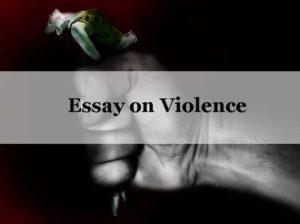 Essay on Violence