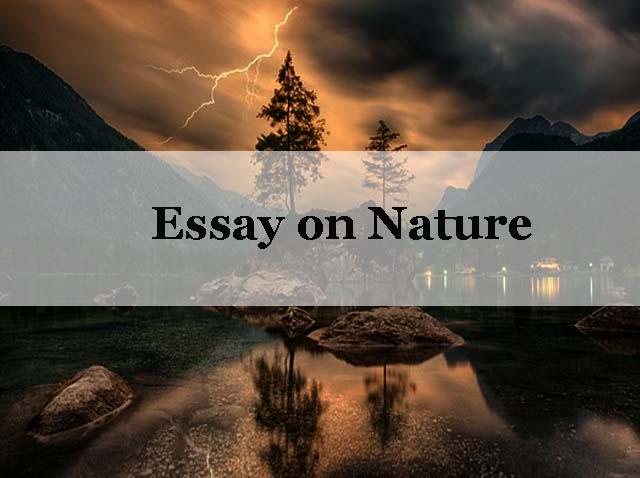 Essay nature